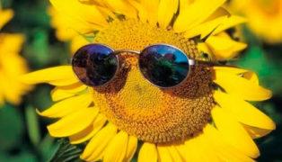 Клуб LadiesFitness проводит Акцию «Лето будет жарким»!